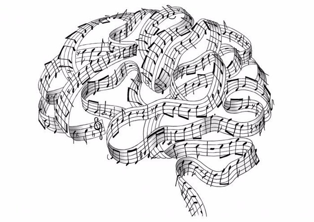 Music and Language in the Brain